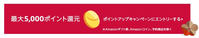 2019 amazon 初売り ポイントアップキャンペーン ポイント付与