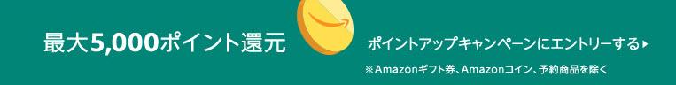 amazonタイムセール祭り エコーショウ echo show kindle
