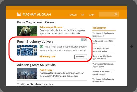 Googleアドセンス グーグルアドセンス ディスプレイ広告 インフィード広告