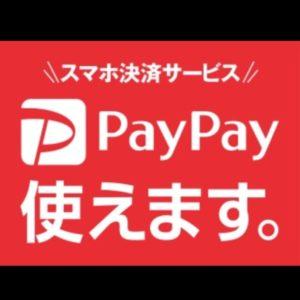 ペイペイ ペイペイとは PayPay 使い方 お店 導入 新規登録方法